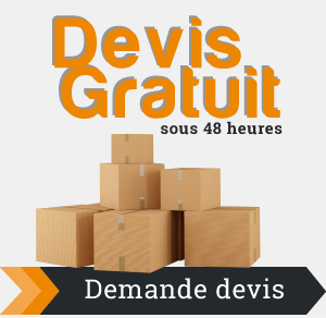 devis-demenagement-paris